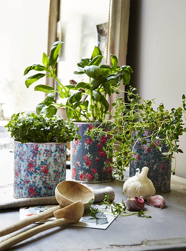 Tin Can Flower Pots Make Your Own