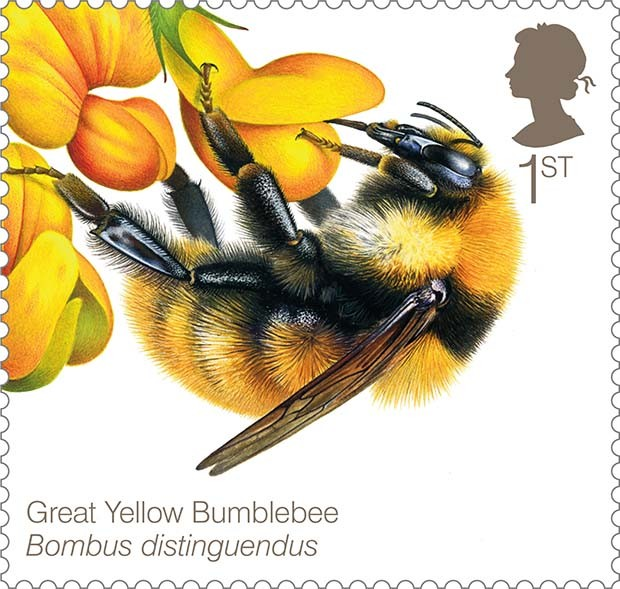 Bee Stamps New Stamps Celebrate Uk Bees
