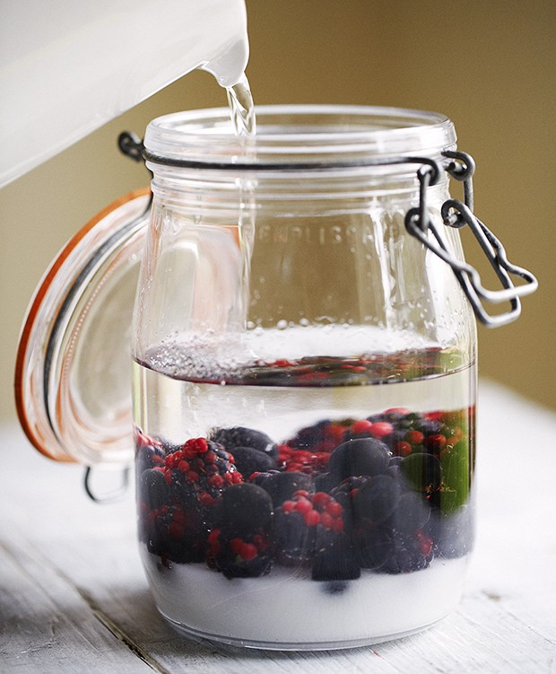 Sloe gin recipe country living magazine uk for Country living magazine recipes