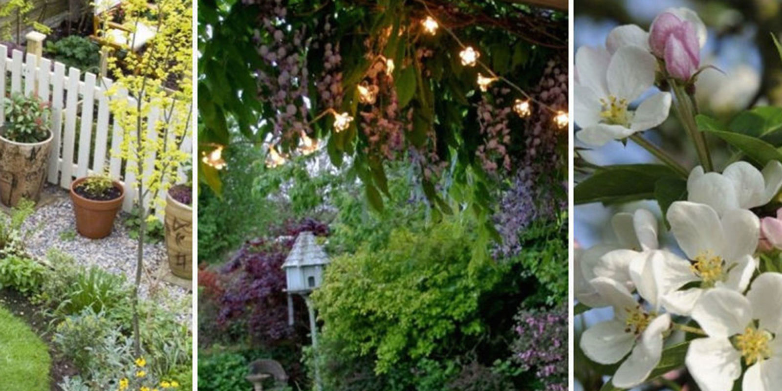 garden ideas on a budget. Black Bedroom Furniture Sets. Home Design Ideas