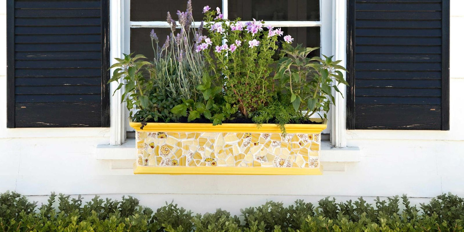 18 colourful gardening ideas for window boxes for Window garden designs