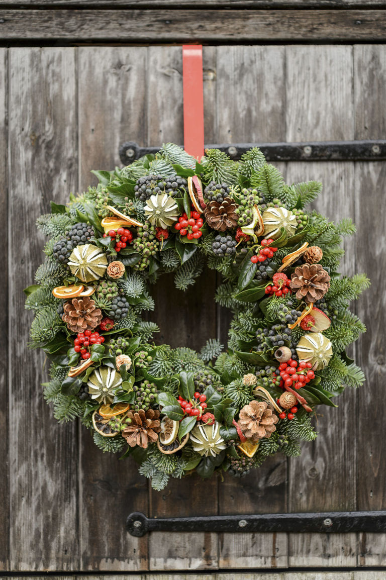 6 of the best holly varieties holly christmas wreath biocorpaavc