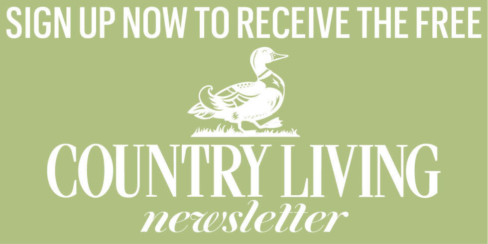 Sign Up To Our Weekly Newsletter