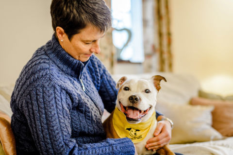 How Owning A Dog Can Reduce Stress