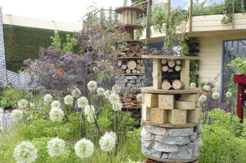 Chelsea flower show 2017 garden trends you can replicate Winner chelsea flower show 2017