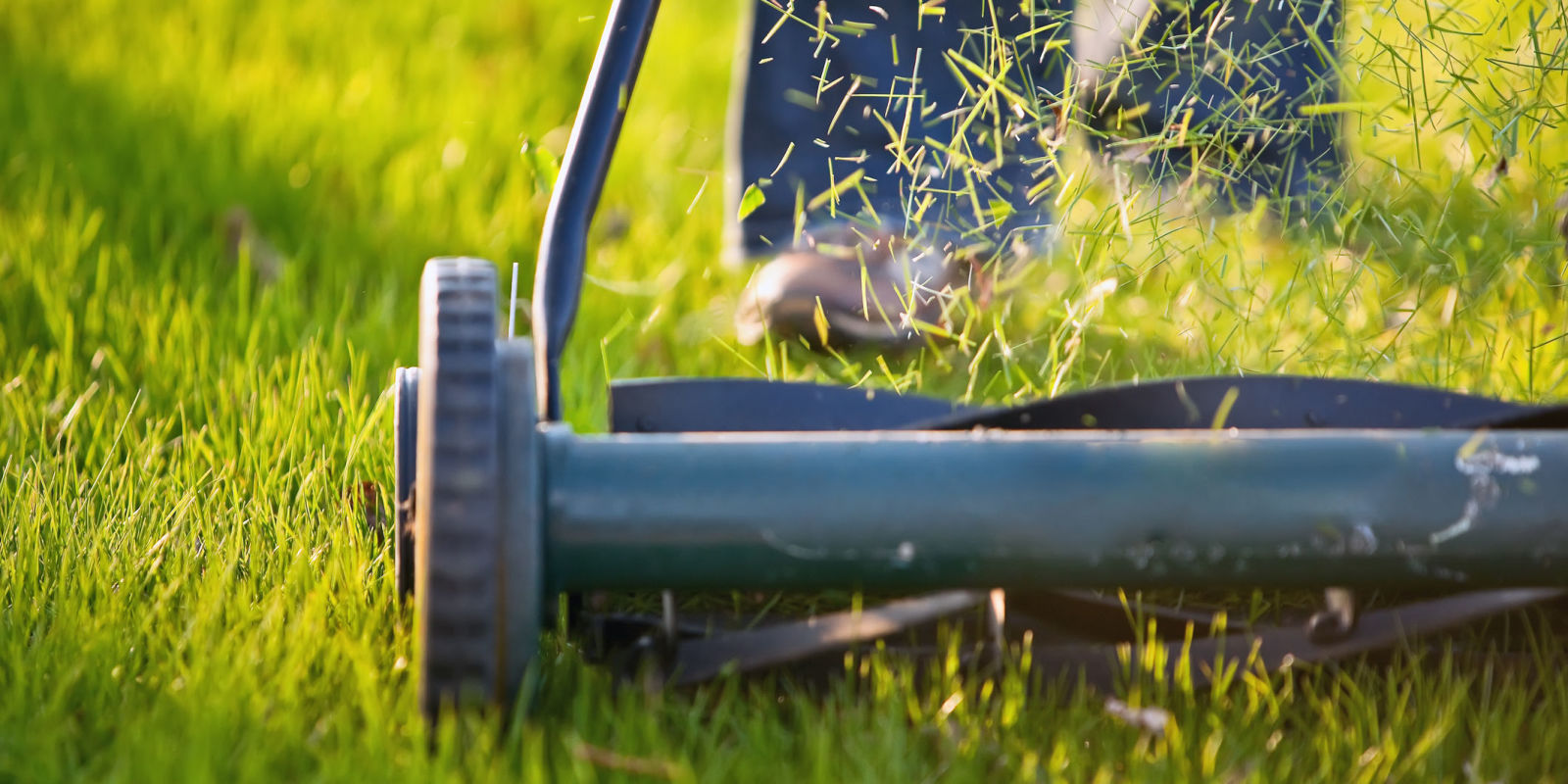 How often should you mow your lawn lawn mowing tips for How often should you mow your lawn
