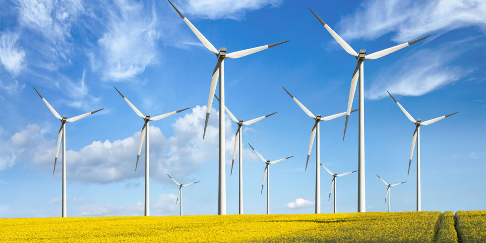 Eco Friendly Wind Turbines Renewable Energy In Fields Of Yellow Flowers