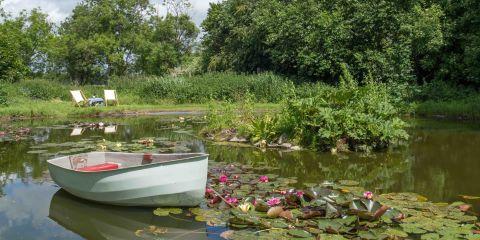 for Garden pond kent