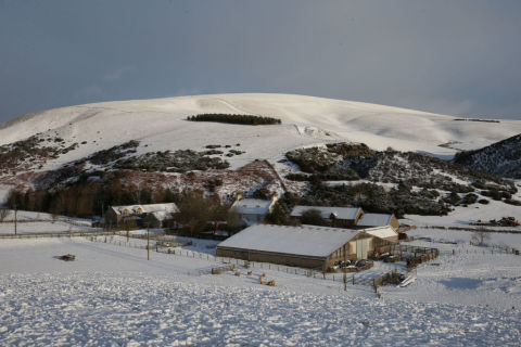 Snow scottish borders