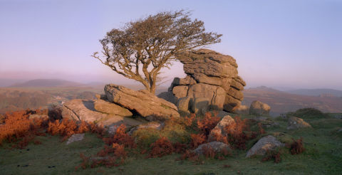Dartmoor - Saddle Tor
