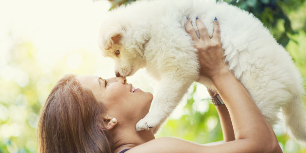 Speaking to your dog in a baby voice does actually make them listen to you, new research finds